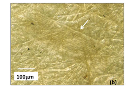 magnified paper