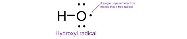 hydroxyl radical