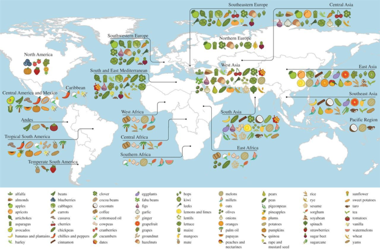 Major agricultural crops worldwide