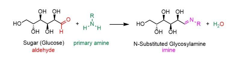 sugar amine condensation