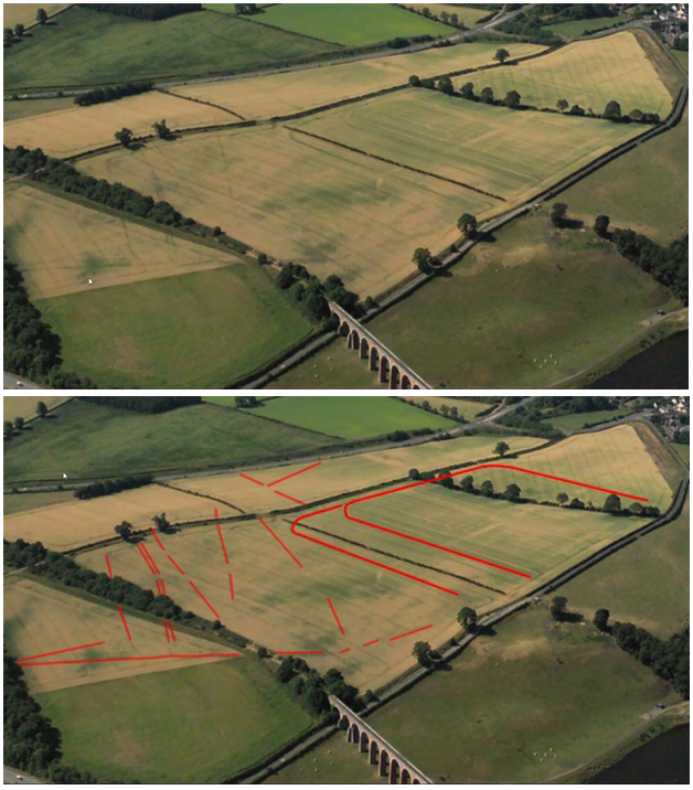 Image showing crop marks at Newstead