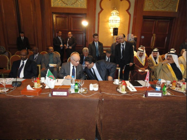 International conference on Syria, in Cairo, 2012
