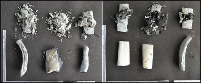 White and fragmented animal bone on the left and similar colour fragments on the right, but with a less fractured appearance due to fusion