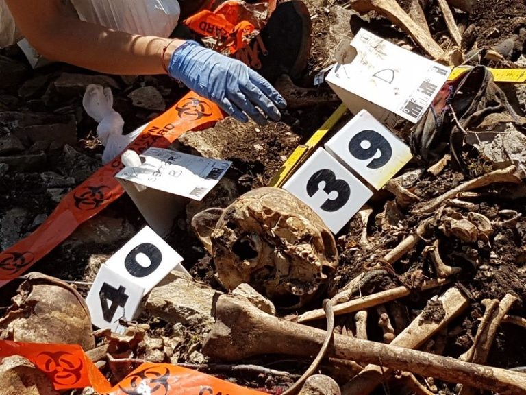 A close up picture of the human remains from the site. Numbers and tape are near to the bones and the gloved hand of a forensic anthropologist is visible