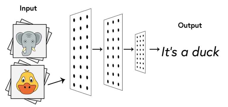 """""""A diagram of a neural network composed of two stacks of cards, one pile depicting an elephant, the other a duck, which are labelled as the input. An arrow points to a neural network layer illustrated as three rectangles of decreasing size containing points arranged in columns and rows. The arrow flows through each layer and terminates with the output which is labelled 'It's a duck'."""""""
