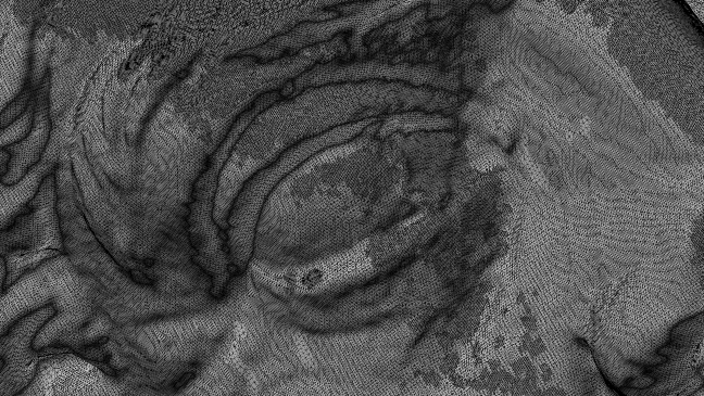 Detail around the eye and nose showing the millions of data points captured in a laser scan of the marble head