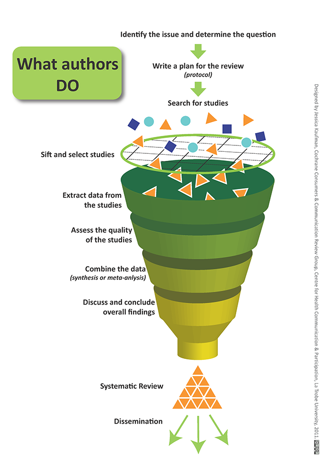 Graphic illustration of what systematic review authors do