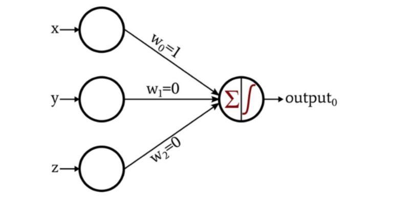 """""""A diagram of a perceptron modelled on a neuron. Three circles on the left are labelled x, y, and z. From each is an arrow labelled with w0, w1, and w2 to denote the weights each one points to a single circle, with a further arrow pointing to a label 'output'."""""""