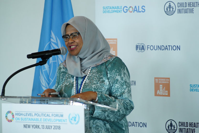 """Woman talking at the """"High-level political forum on sustainable development"""""""