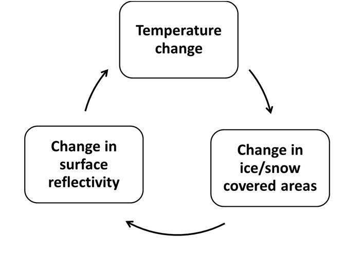 Circle diagram of albedo feedbacks.