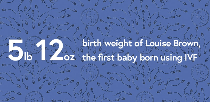 the weight of the first baby born by IVF