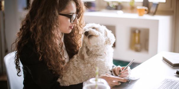 Fl298 Freelance Writer Blog Header
