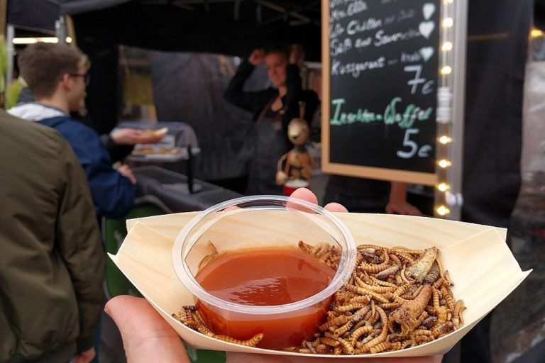 Food container with whole, roasted edible insects (mealworms, buffaloworms, grasshoppers, crickets) and dip at a street-food market in Germany