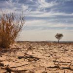 Climate Change Nigeria