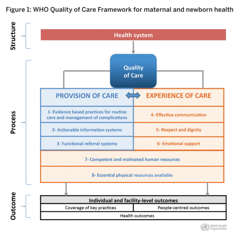 Provision of Maternal Health Care During Labour and Childbirth Image 1