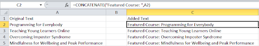 How to add text to an Excel cell with a function.