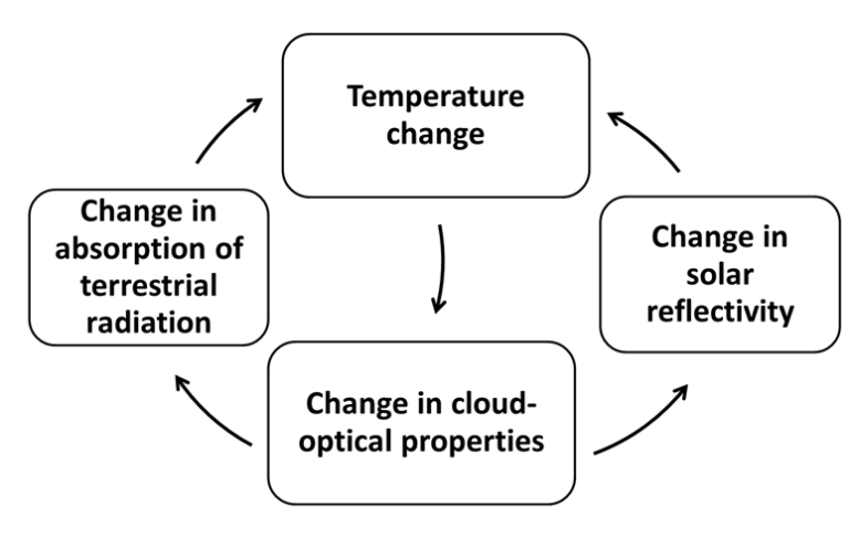 Circle diagram of cloud feedbacks.
