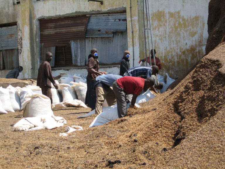 """Workers putting """"husk material"""" -waste from coffee production- into bags2010 July Tanzania 032.jpg"""