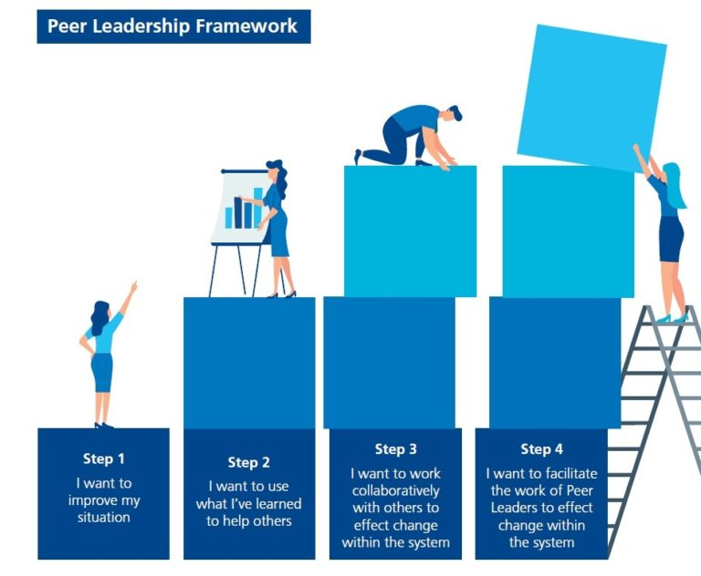 Peer Leadership Framework visually describing each of the stages listed below in the text