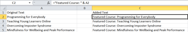 How to add text to an Excel cell with a formula.