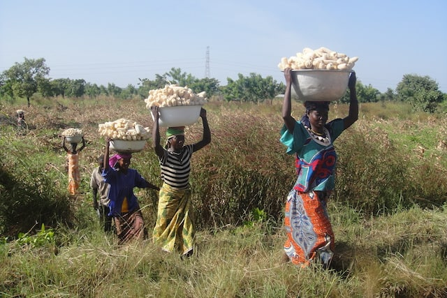 African women carrying baskets of food on their heads